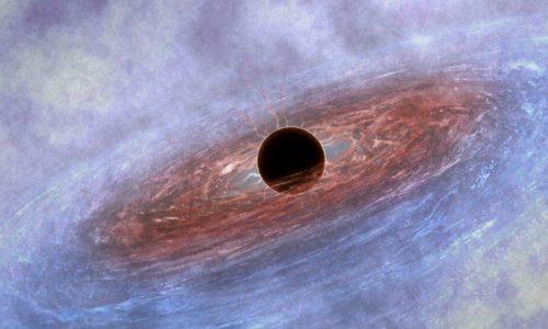 Stephen Hawking –  Il Grande Disegno – video