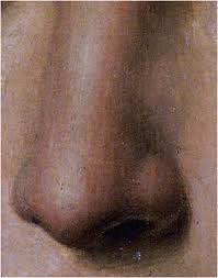 Staminali: uomo perde naso, glielo fanno ricrescere su un braccio
