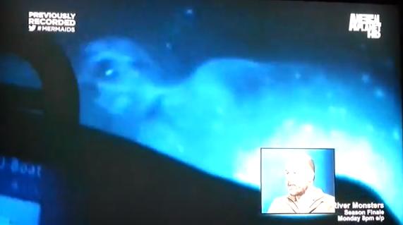 Sirena ascoltata e catturata in un video