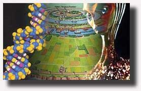 La Storia del DNA e della Razza Umana