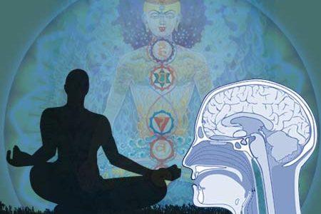 Due mesi di meditazione «cambiano» davvero il cervello
