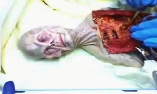 TV Greca – Inizio di divulgazione UFO