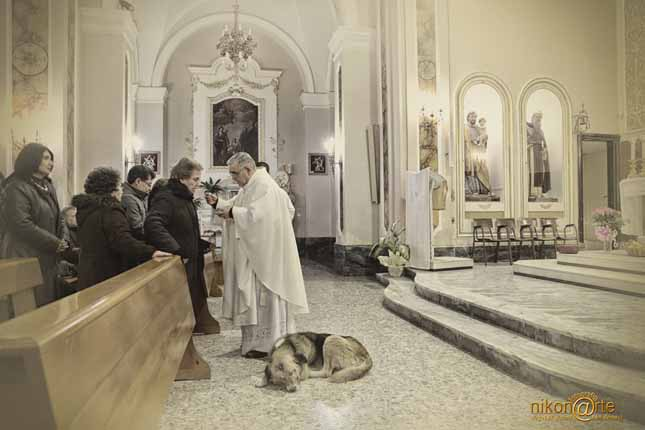 San Donaci (Brindisi), la storia