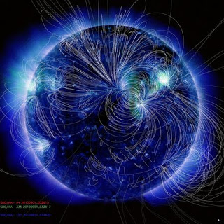Campi Magnetici