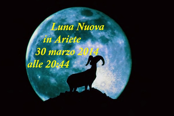 Luna (1)