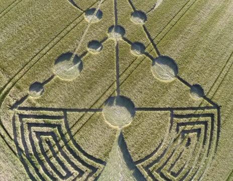 Crop circle con un impatto molto forte – 17 giugno 2014 in Banbury Rings, vicino Wimborne Minster in UK.