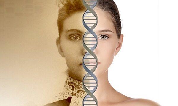 L'evoluzione  (l'ascensione) è causale o casuale?
