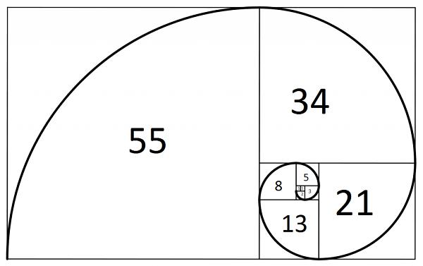 Fibonacci-Spiral-1024x645
