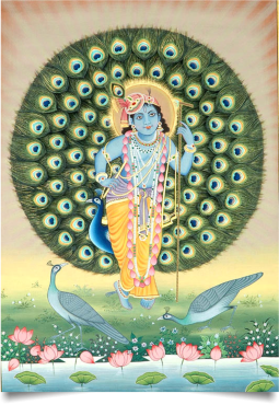 standing_krishna_with_aureole_of_peacock_feathers
