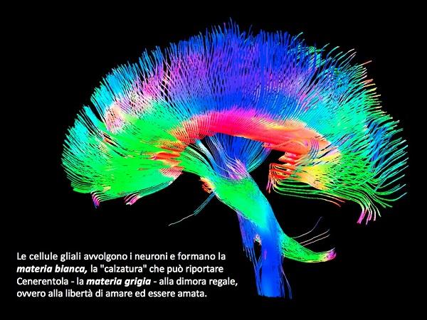 neuroni-1024x768