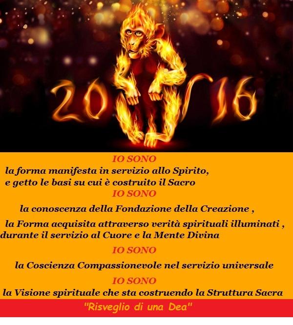 2016 anno della scimmia