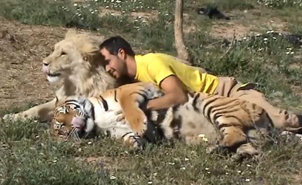 uomo-leone-tigre