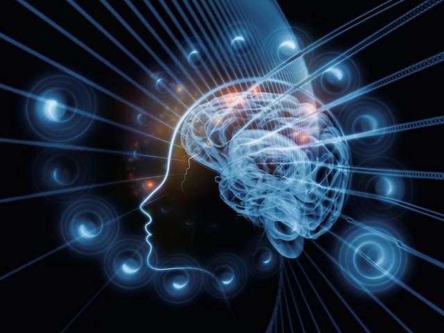 brain-pathway-640x480