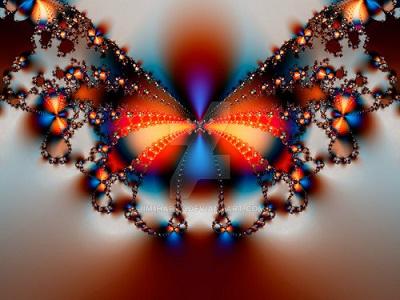 farfalla frattale